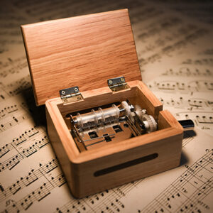 MUSIC BOX Premium (Gimmicks and Online Instruction) by Gee Magic – Trick