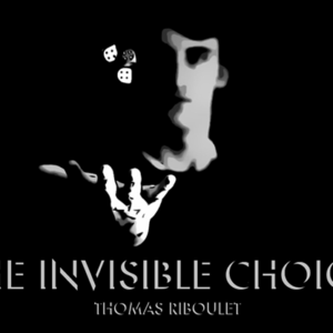 The Invisible Choice by Thomas Riboulet – Book