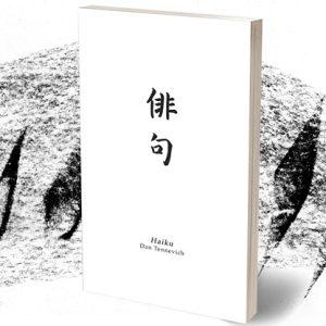 Haiku Book Test 2.0 by Vincent Hedan – Trick