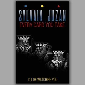 Every Card You Take by Sylvain Juzan – Book